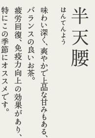 osusume2016natsu-01